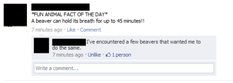 beaver-facts