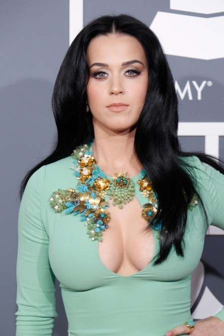 Katy-Perry-NHL-Game-5-450x675